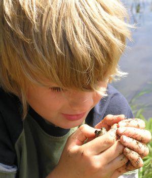 Haliburton-Muskoka-Kawartha Children's Water Festival